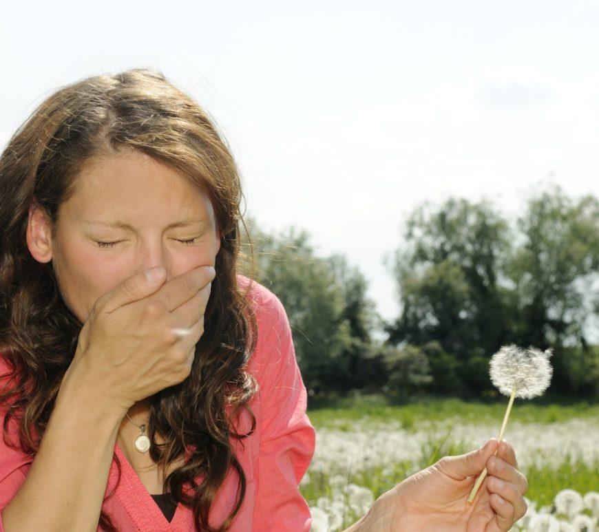 Die Gefahr für Allergiker: Kreuzallergien