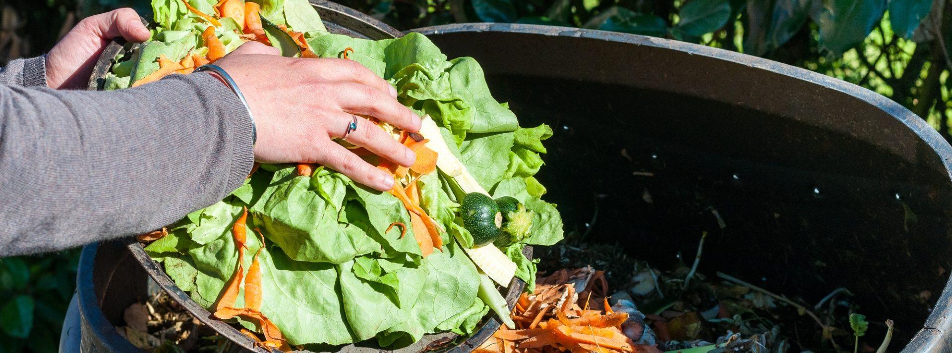 Ursachen für Lebensmittelverschwendung