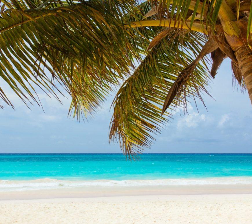 Urlaubsvorbereitung: Sommer, Sonne, Strand - das dürft ihr nicht vergessen