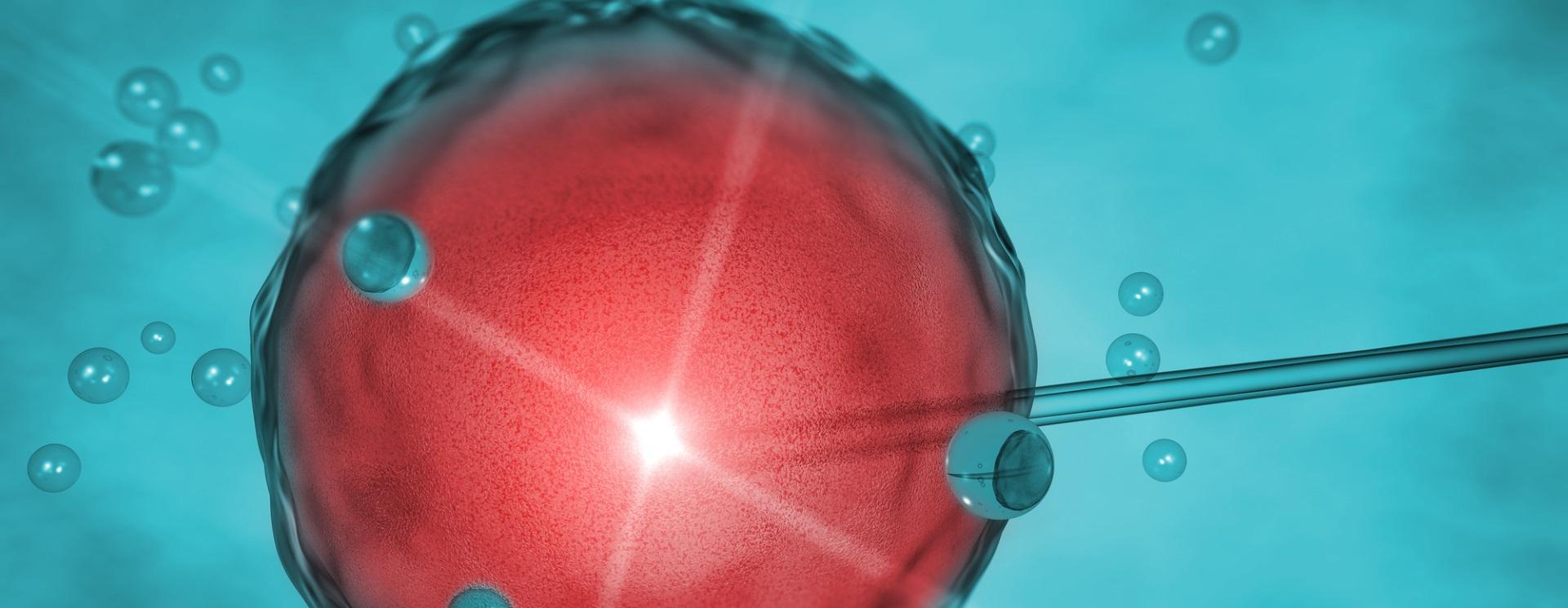 Künstliche befruchtung single dänemark kosten